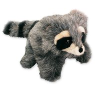 2238 - Baby Raccoon