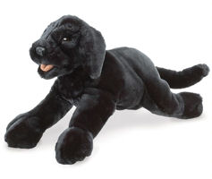 2274 - Black Labrador Puppy  Dog Puppet