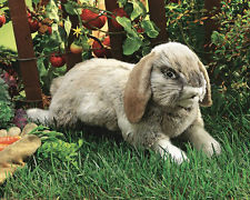 2892 - Folkmanis Holland Lop Rabbit Puppet